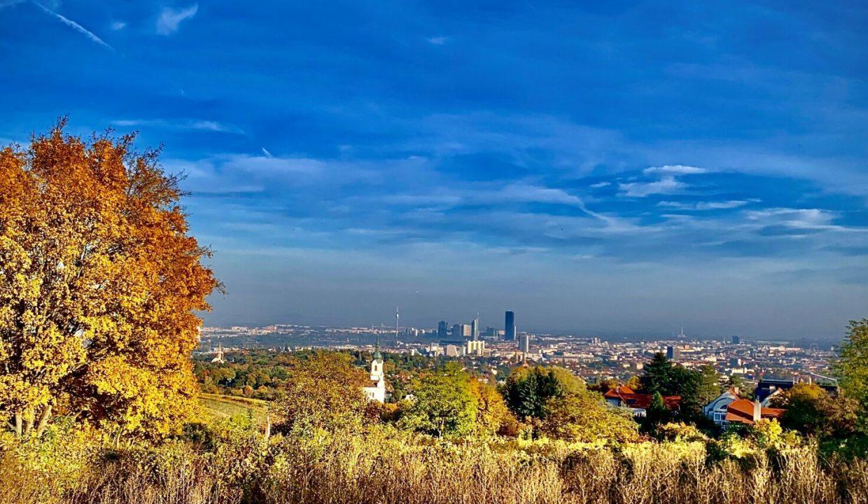 Bellvue im Herbst